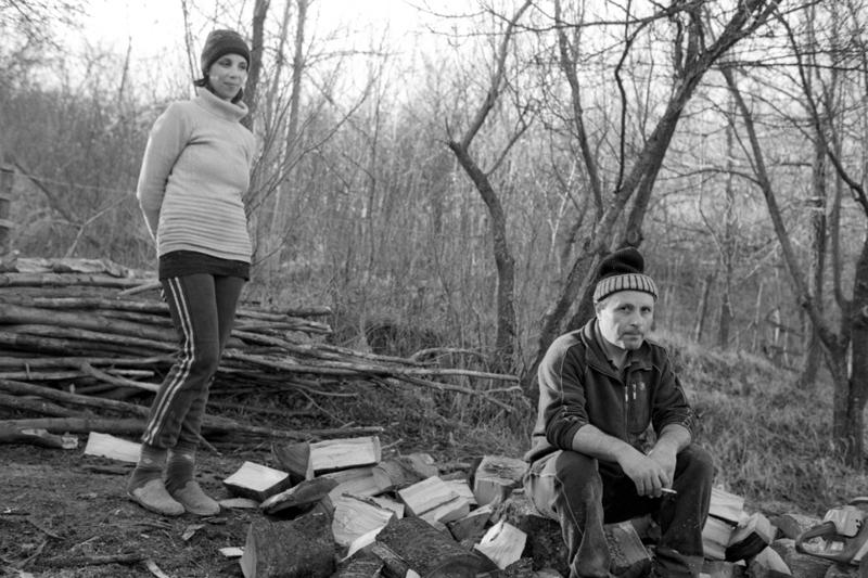 Preparing Firewood for Winter